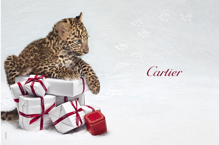 cartier_panther_boxes.jpg