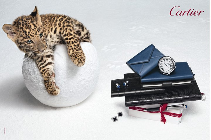 cartier_panther_snowball.jpg